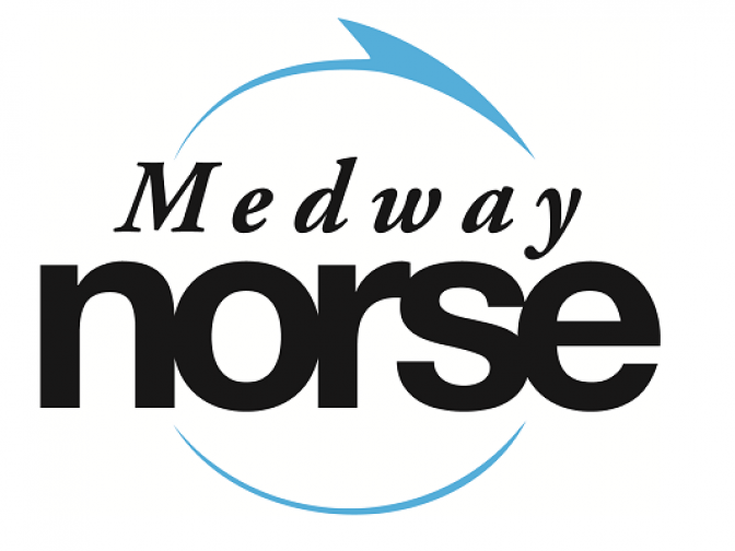 Medway Norse Logo